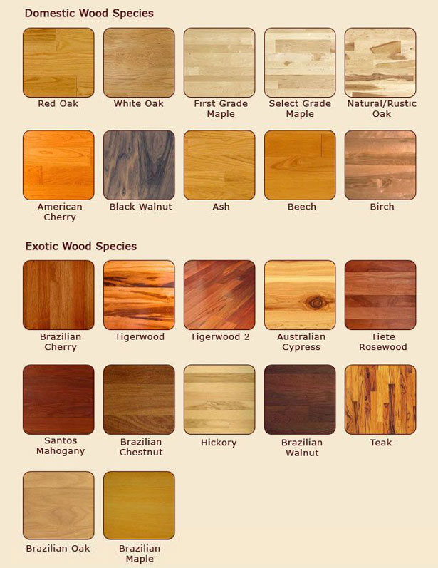 exotic wood types 2